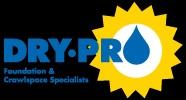 Dry Pro Logo
